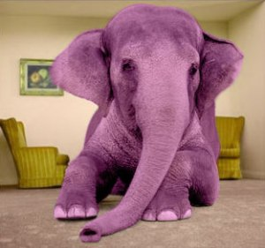 pink-elephant-living-room